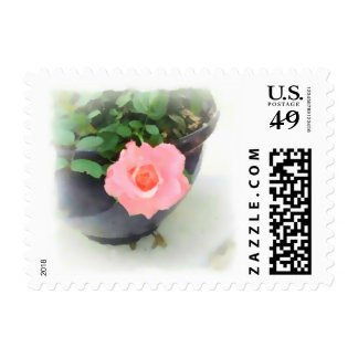 Soft Pink Minature Rose Stamps