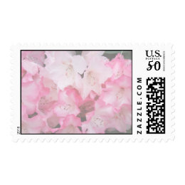 Soft Pink Rhododendron US postage Stamp
