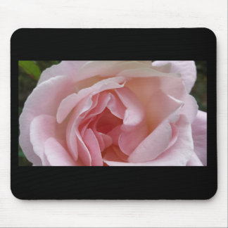 Soft Pink Rose Mouse Pad