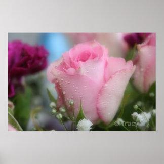 Soft Pink Rose Poster