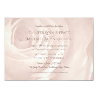 soft pink rose simple elegant wedding invitation