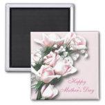 Soft Pink Roses Magnet