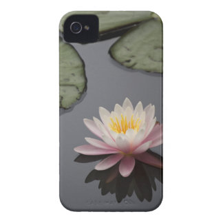 Soft Pink Waterlily Flower iPhone 4 Cover