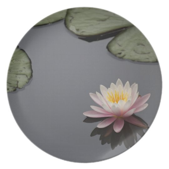Soft Pink Waterlily Flower Plate