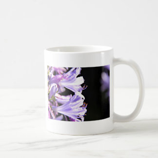 Soft Purple Agapanthus Flowers - Lily of the Nile Coffee Mug