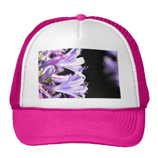 Soft Purple Agapanthus Flowers - Lily of the Nile Trucker Hat
