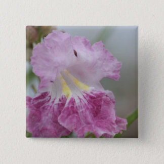 Soft purple and yellow Jacaranda flowers of spring Pinback Button
