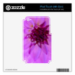 soft Purple Dahlia Decal For iPod Touch 4G