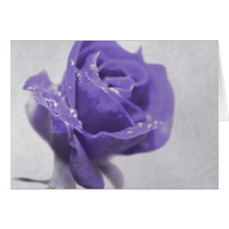 Soft purple Rose created by Tutti Card