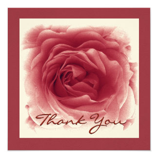 Soft Red Rose ANNIVERSARY Thank You Card