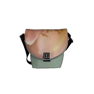 Soft Rose - Mini Messenger Bag Outside Print