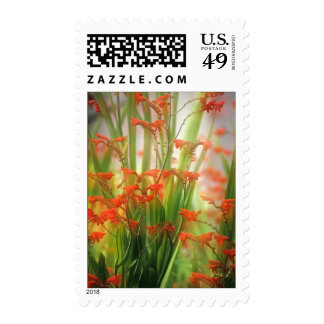 Soft Summer Blooms Postage Stamps