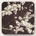 Soft Tones, Cherry Blossoms Beverage Coasters
