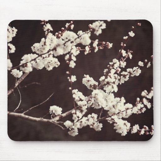 Soft Tones, Cherry Blossoms Mousepads