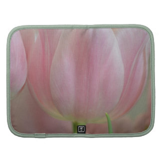 Soft Tulips Planners