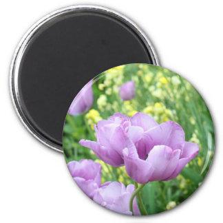 Soft, violet tulips 2 inch round magnet