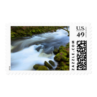 Soft Water River Mossy Bank Postage Stamp