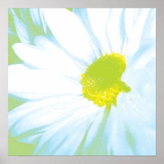 Soft White Flower Print