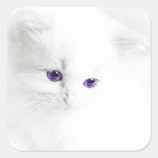 Soft White Kitten with Purple Eyes Square Sticker