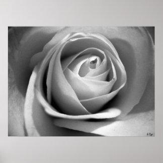 Soft White, S Cyr Poster