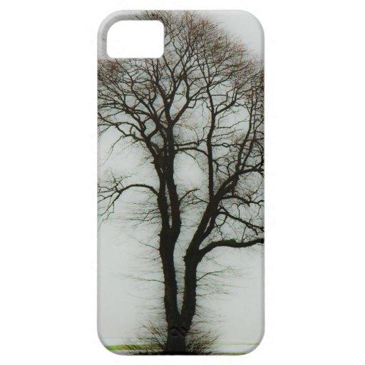 Soft winter tree iphone 5 case