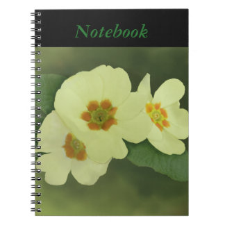 Soft Yellow Primrose Flowers Spiral Notebook