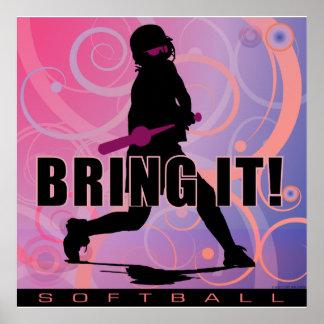 softball101 posters