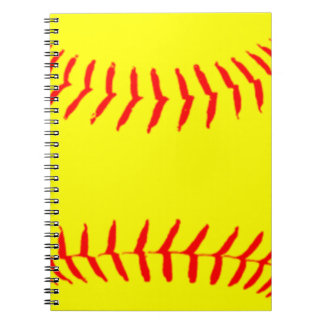 Softball modificado para requisitos particulares libro de apuntes