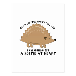 Softie at Heart Postcard