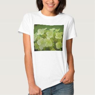 Softly Tshirts