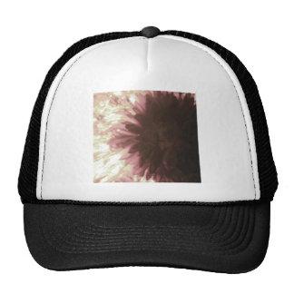 Softness Number 1 Hats
