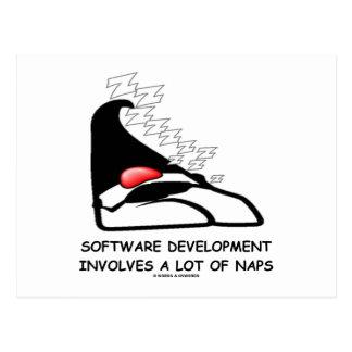 Software Development Involves A Lot Of Naps Post Card