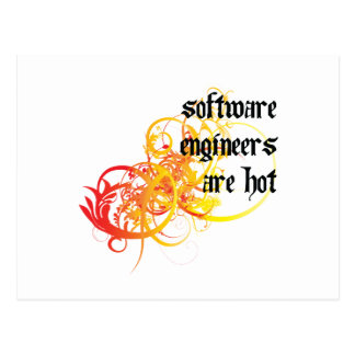Software Engineers Are Hot Postcard