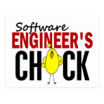 Software Engineer's Chick Postcard