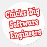 Software Engineers del empuje de los polluelos Pegatina Redonda