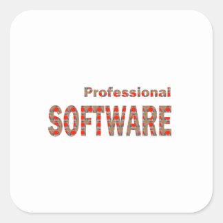 SOFTWARE Professional Engineer Internet App Virus Square Sticker