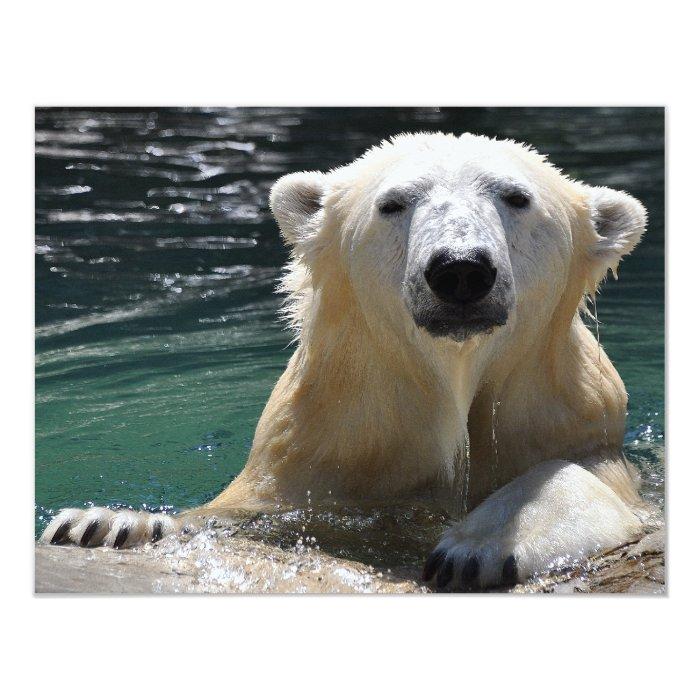 Soggy Polar Bear Card