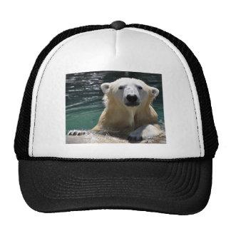 Soggy Polar Bear Hats