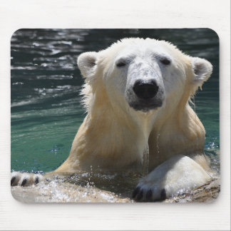 Soggy Polar Bear Mouse Pad