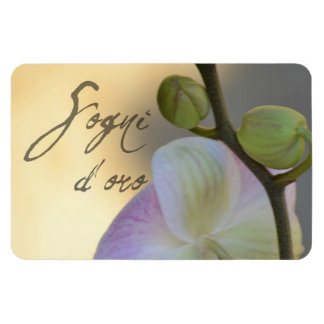 Sogni D'oro (sweet dreams) Orchid Magnet