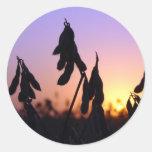 Sojas en la puesta del sol pegatina redonda