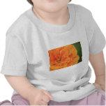 Sol Camiseta