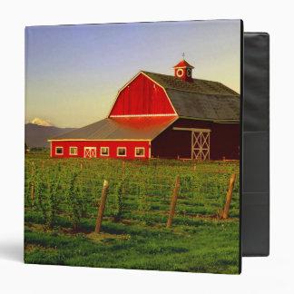 """Sol de la tarde en un granero en Skagit de Carpeta 1 1/2"""""""