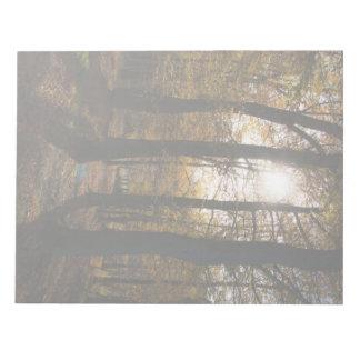 Sol del bosque bloc de notas