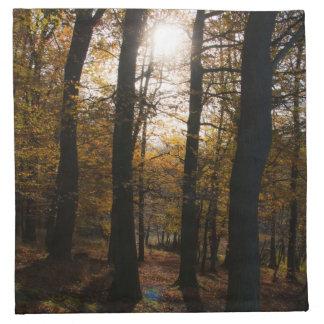 Sol del bosque servilletas imprimidas