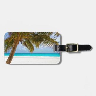 Sol del cielo azul del paraíso de la palma etiquetas para maletas