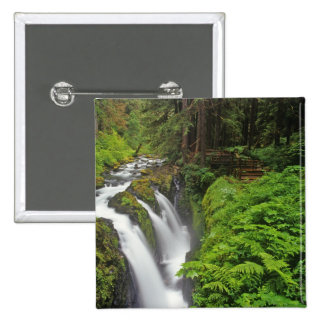 Sol Duc Falls in Olympic National Park in 2 Pin