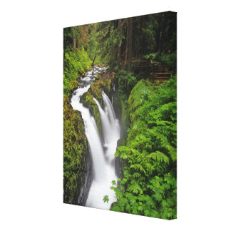 Sol Duc Falls in Olympic National Park in 2 Canvas Print
