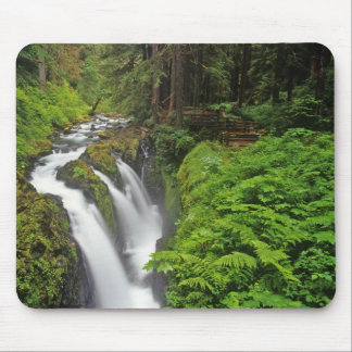 Sol Duc Falls in Olympic National Park in 2 Mouse Pad