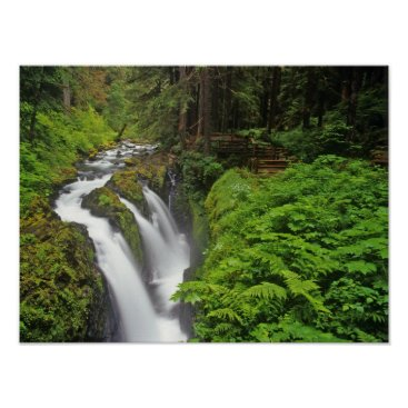 Christmas Themed Sol Duc Falls in Olympic National Park in 2 Poster